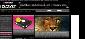 2009年法国互联网十大趋势