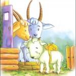 格林童话: a fish and a lamb  小羊羔与小鱼儿